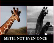 meth not even once even for a giraffe