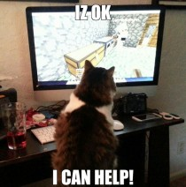 Minecraft kitty
