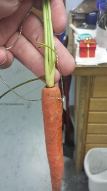 Mom wanted a  carrot necklace