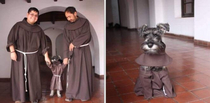 Monastery Adopts Adorable Stray Dog Who Now Lives Like a Friar