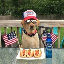 Most Murican dog ever