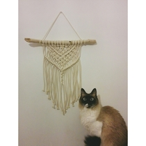 My cat is stunned with my first macrame attempt