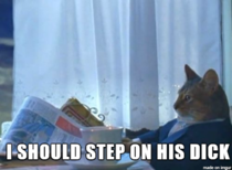 My cat within three minutes of me getting home from getting a vasectomy