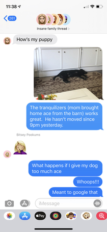 My daughter and son-in-law asked us to watch the puppy while they are out of town My response after  hows my puppy texts