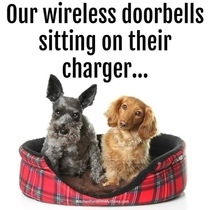 My doorbell barks does yours