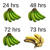 My experience with purchasing bananas