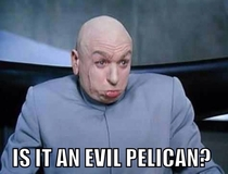 My first thought when I heard the New Orleans Hornets changed their mascot to the pelicans