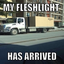 My fleshlight is finally here