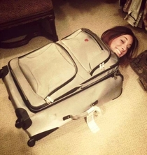 My friend climbed into a suitcase and awesome happened