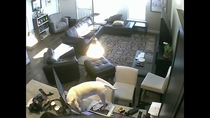 My friend installed a puppy cam he says hes not sure he likes watching it though
