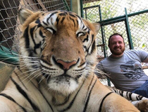 My friend went to Thailand and apparently got a tiger to take a selfie of the two of them smiling