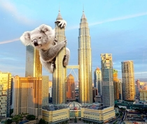 My girlfriend just said Koala Lumpur I Googled it and was not disappointed