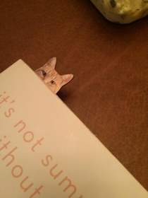 My girlfriend thinks her bookmark is hilarious