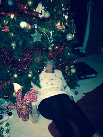 My grandma got so smashed at Christmas dinner that she fell into the tree