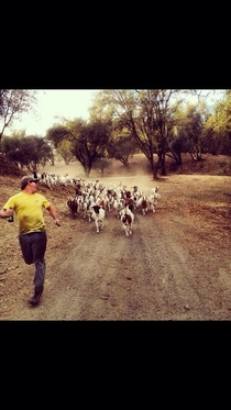 My little brother running away from a stampede of goats while holding a beer Just another day in the life of a country boy
