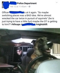 My local PD posted this to their Facebook the other night