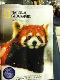 My mom is obsessed with foxes lately She was so excited when she texted me this saying Look who showed up on the cover of National Geographic Close enough Ma