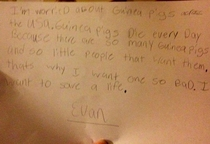 My sister told her daughter she couldnt have a guinea pig This was her written response