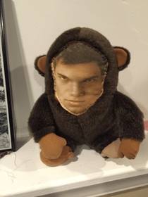 My sisters neighbor wore the face off her monkey so she fixed it with an old tee shirt
