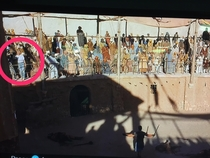 My son spotted the camera tripod and assistant in the movie Gladiator when he was yelling Are you not entertained