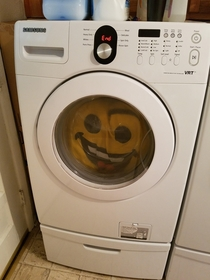 My washing machine was very happy to see me this morning