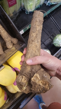 My wife asked me to pick up some girthy roots at the store