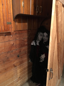 My wife put these Halloween decorations behind a door in our basement now I need new underwear