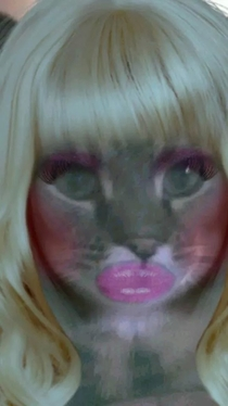 My wife used the bimbo booth app on our cat
