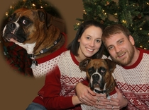 My wife wanted an ugly sweater Christmas card So I turned it into an awkward family photo