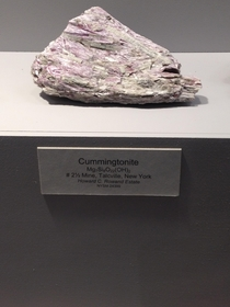 Named by a hopeful geologist