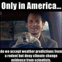 No one can deny a source like Punxsutawney Phil
