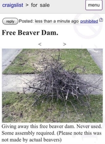 not built by actual beavers
