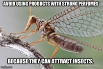 Now that the weather is warming up I present Actual Advice Weird Monster Duck Faced Mutant Scorpion Fly Thing