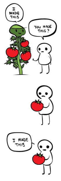 Now whenever I say I grew the vegetables in my garden I think of this