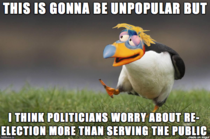 Obvious Opinion Puffin