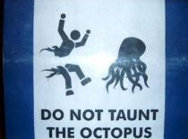 Octopi are not to be trifled with