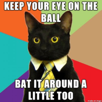 Office Cat is good at advice