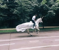 officers in poland riding unicorns