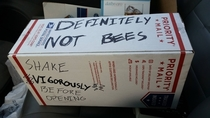 Oh thank goodness its not bees