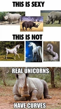 Only the realest of unicorns
