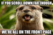Optimistic Otter - Thank you RES