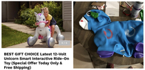 Ordered a magical ride-on unicorn Received an inflatable donkey