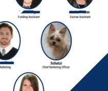 Our office dog is featured on our marketing materials