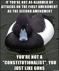 Peaceful protest is Constitutionally protected