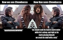 Perspectives on Chewbacca