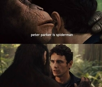 Peter Parker is spiderman