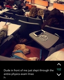 Physics is Ruff