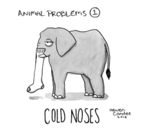 Pic #1 - Animals Experiencing Human-Like Problems