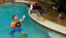 Pic #1 - Dogs  ball  Underwater camera