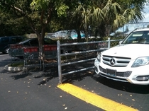 Pic #1 - Entitled parking max level achieved x-post from rpics